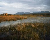 Коннемара, графство Голуэй, Ирландия — стоковое фото