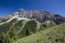 Montaña con verdes prados - foto de stock
