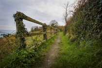 Fence Along Path in Ireland — Stock Photo