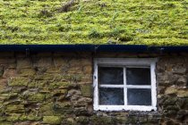 Cottage With Grassy Roof — Stock Photo