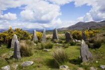 Ardgroom Stone Circle Near Ardgroom — Stock Photo