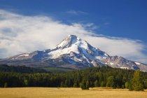 Mount Hood mit eingereicht — Stockfoto