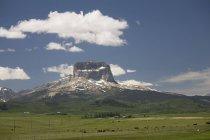 Гора з пасовища великої рогатої худоби — стокове фото