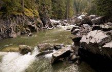 Nairn Falls, Whistler, British Columbia — Stock Photo