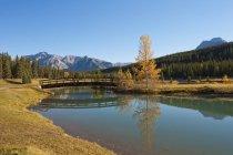Footbridge At Cascade Ponds — Stock Photo