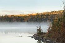 Niebla sobre un lago cerca de Wawa - foto de stock
