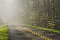 Грейт-Смоки-Лейк-Маунтинс — стоковое фото