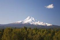 Vue du Mont Hood — Photo de stock