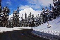 Strada e neve sul Monte Cappuccio — Foto stock