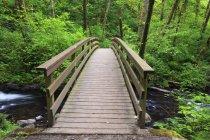 Un ponte che attraversa il torrente del velo nuziale — Foto stock