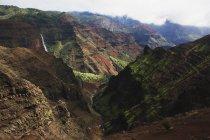 Despejando la niebla en el cañón de Wimea - foto de stock