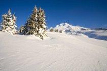 Überdachte Schneeberg — Stockfoto