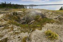Fumarole in der Nähe des Yellowstone Lake — Stockfoto