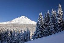 Взимку снігу над каскадних гір — стокове фото