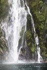 Stirling Falls, Nouvelle-Zélande — Photo de stock