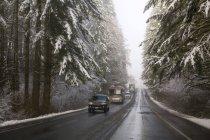 En invierno carretera - foto de stock