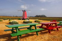 Windmill And Picnic Tables — Stock Photo