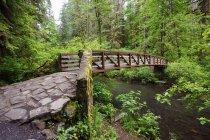 Мост, возле Северная средний водопад — стоковое фото