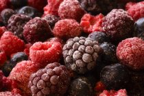 Raw Mixed Berries — Stock Photo