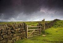 Каменный забор и деревянные ворота — стоковое фото
