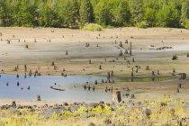 Rock Creek Reservoir — Stockfoto