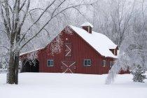 Красный амбар, покрытые снегом — стоковое фото