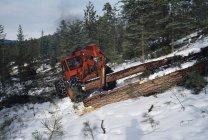 Ascensores Arrastradores de troncos - foto de stock