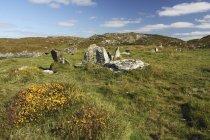 Standing Stones On Sherkin Island — Stock Photo