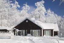 Casa ed alberi coperti In neve — Foto stock