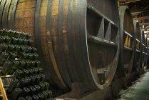 Barris de carvalho e garrafas em Mendoza, Argentina — Fotografia de Stock