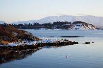 Snowy Shore en hiver — Photo de stock