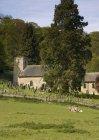 Церковь и кладбище — стоковое фото