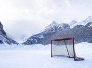 Hockey Goal On Frozen Lake — Stock Photo