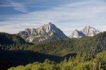 Горные вершины с холмистых лесов — стоковое фото
