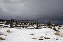 Заснеженное поле и забор — стоковое фото