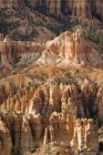 The Needles Of Bryce Canyon — Stock Photo