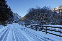 Gougane barra parc de la forêt dans l'ouest de cork — Photo de stock