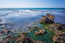 Cesarea Marittima un parco nazionale — Foto stock