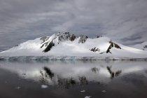 Montanha, reflectida no Oceano Antártico tranquilo — Fotografia de Stock