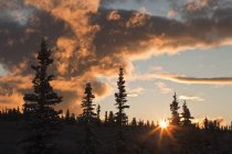 Драматические облака, закурил на рассвете — стоковое фото