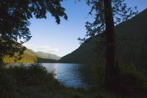 Davis lake beneath — Stock Photo