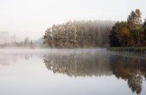 Nebel über dem ruhigen See — Stockfoto