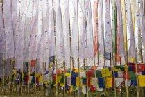 Bandiere di preghiera buddista al monastero — Foto stock