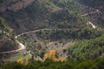 Аэрофотоснимок дороги — стоковое фото