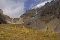 Col de la sentinelle; Alberta — Photo de stock