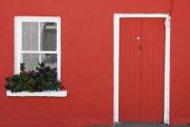 Blumenkasten In Fenster — Stockfoto