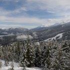 Árvores nas montanhas cobertas de neve — Fotografia de Stock