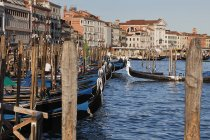 Gondolas Along Harbor in Venice — Stock Photo