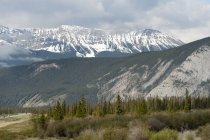 Montañas rocosas de Canada - foto de stock