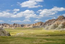 Красочный пейзаж с травой — стоковое фото
